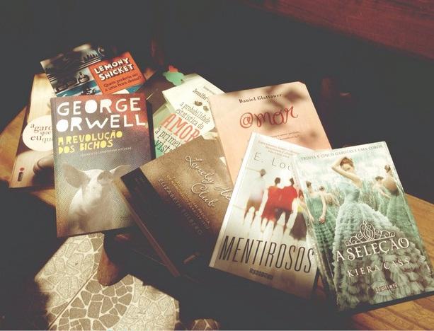 livros-dia